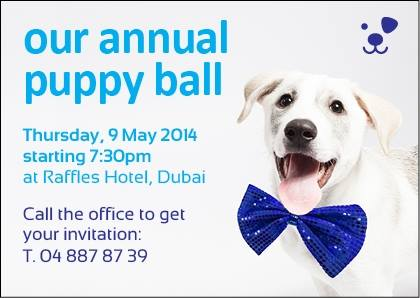 puppy-ball