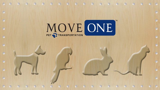 move-one-pet-transportation