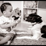 Health in pet ownership