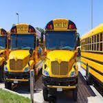 school bus 2015